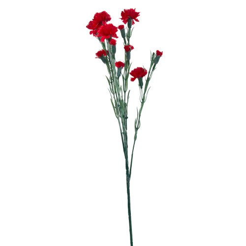Carnation Spray Red