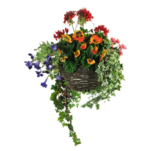 Tree-locate Med H/b Geranium Summer Mix, Mixed