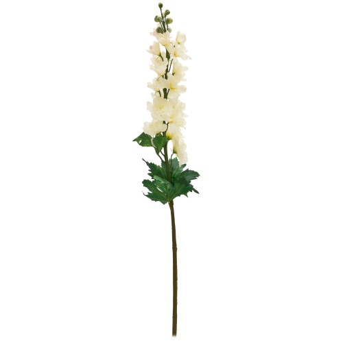 Casa Single Delphinium, Cream