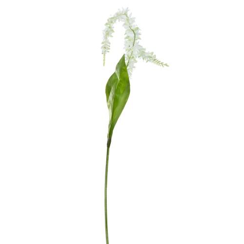 Casa Single Orchid, Cream