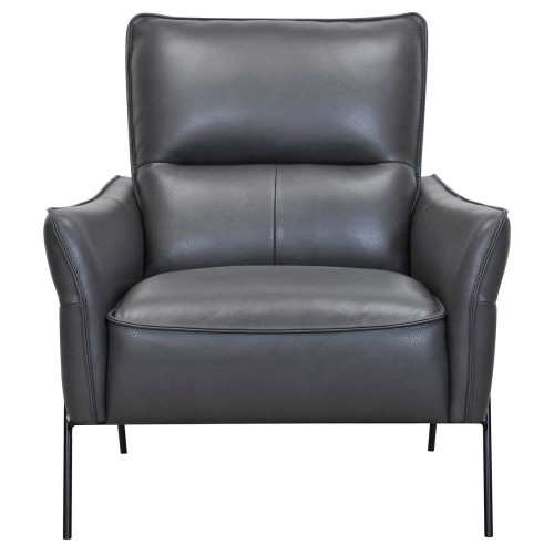 Casa Asten Leather Accent Chair, Charcoal