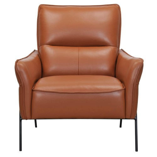 Casa Asten Leather Accent Chair, Ginger