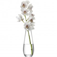 Lsa Flower Tall Stem Vase 29cmclr