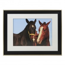 Black Framed Horses, Brown