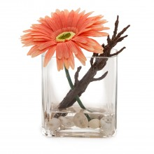 Gerbera Arrangement In Glass, Peach