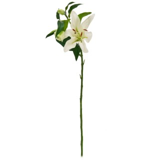 Casa Single Lilly With Leaves White, White