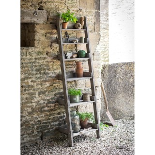 Garden Trading Aldsworth Shelf Ladder, Wood