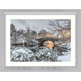 Artko Ltd Icon Of Central Park Framed, Silver