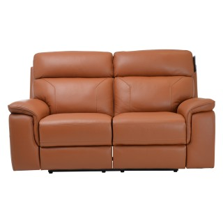 Casa Harry 2 Str Pwr Recliner (2p) Ginger 2 Seat
